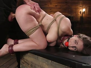 Pulverized gagged whore with big booty Stella Cox is brutally nailed doggy